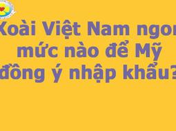Xoài Việt Nam ngon mức nào để Mỹ đồng ý nhập khẩu?