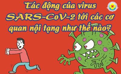 Tác động của virus SARS-CoV-2 tới các cơ quan nội tạng như thế nào?