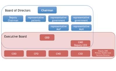 Tìm hiểu thêm hệ thống hội đồng 2 cấp khi chuyển đổi sang cơ chế tự chủ của các bệnh viện công lập tại các nước trên thế giới